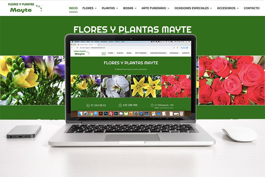 Flores y plantas Mayte